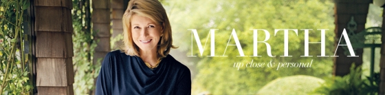 Martha's Blog Banner