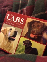 Just Labs desk calendar