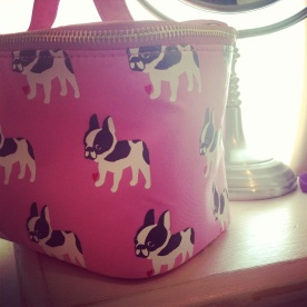 my new makeup bag
